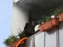 Požár balkónu - 10.1.2009