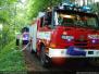 Požár lesa - 14. 6. 2009