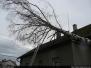 Větrná smršť - 25. 12. 2009