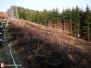 Požár lesa - Lichnov, 30. 3. 2011