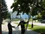 Sršni nad chodníkem - 25. 8. 2011