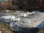 Monitoring vodních toků - 25. 2. 2012