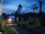 Strom po úderu blesku - 26. 5. 2014