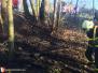 Požár lesního porostu - 7. 4. 2020