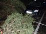 Spadlý strom na osobní automobil - 2. 2. 2019